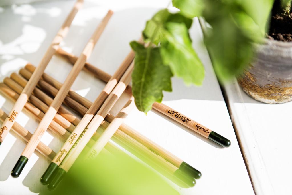 Crayon à planter - Objet publicitaire naturel