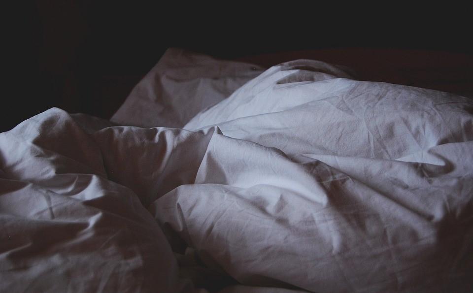 invasion punaises de lit